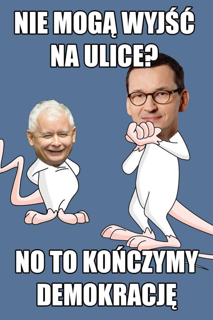 Pinky i Mózg z głowami Jarosława Kaczyńskiego i Mateusza Morawieckiego oraz napis: Nie mogą wyjść na ulice? No to kończymy demokrację - mem